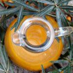 Une centrifugeuse vous aide à préparer de délicieux jus